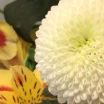 2月2日 「幸せの理由」 佐藤和宏牧師